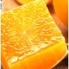果冻橙水果新鲜包邮当季橘子柑橘整箱桔子橙子