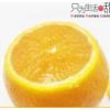 长江云雾夏橙子鲜甜榨汁橙当应季时令新鲜水果夏橙整箱5斤礼盒装