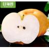 山东莱阳秋月梨10斤梨子 新鲜当季水果黄花梨丰水甜雪梨整箱包邮