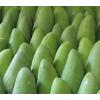 越南芒果进口青芒10斤新鲜水果包邮当季整箱应季特大甜心芒青皮