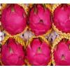 金都一号红心火龙果当季 新鲜水果整箱批发金都一号大果10斤包邮
