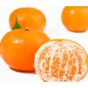 广西武鸣沃柑新鲜爽口水果整箱橘子蜜橘桔子沙糖桔皇帝贡柑砂糖橘