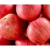 山东烟台红富士苹果水果新鲜应季孕妇脆甜3斤5斤10斤正宗
