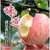 山东烟台红富士苹果3斤水果新鲜应当季整箱脆甜萍果冰糖心丑平果5